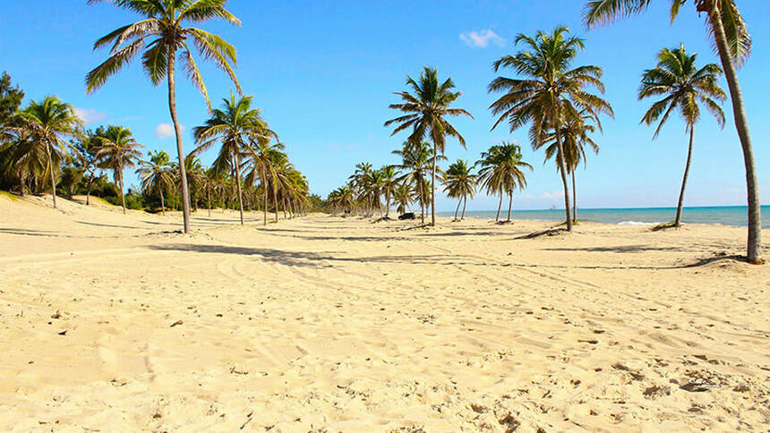 Direct round-trip flight from Amsterdam to Fortaleza, BRAZIL + 7 nights in beachfront apartment for 470 € pp ( 2 pax )