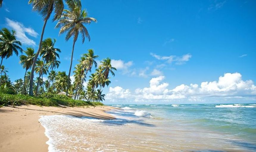 Direct return flight from Cologne to Punta Cana for just 304 €
