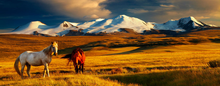Return flights from Geneva to Mongolia from just 288 €