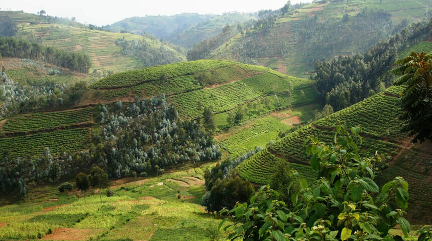 Round-trip flights from Nantes to RWANDA on sale from just 296 €